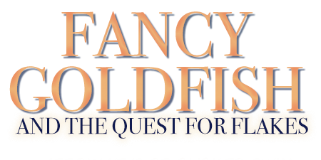 Fancy Goldfish