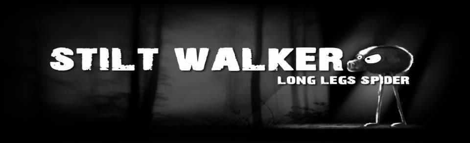 Stilt Walker–Long Legs Spider