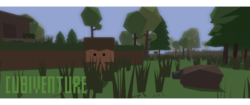 Cubiventure