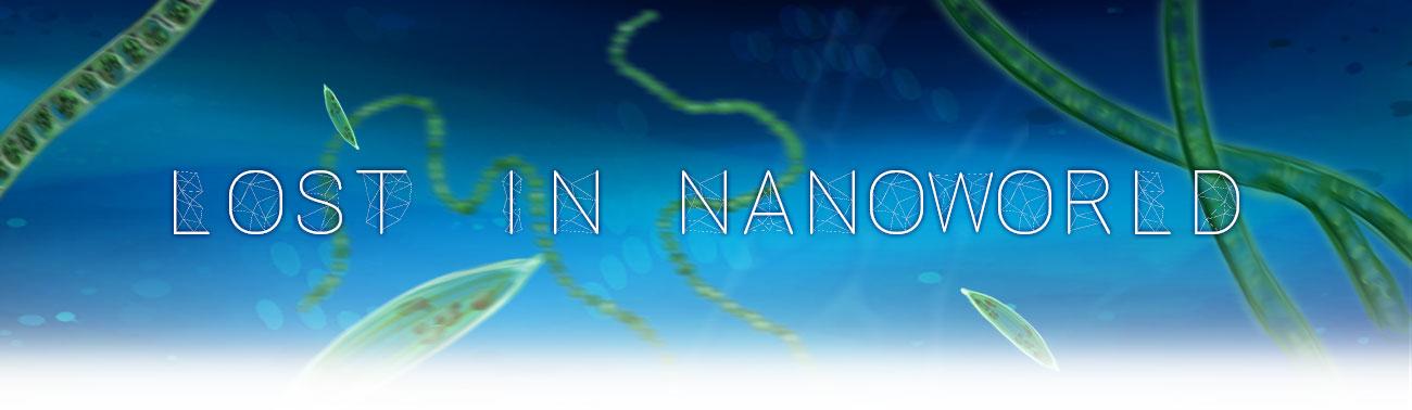 Lost In NanoWorld