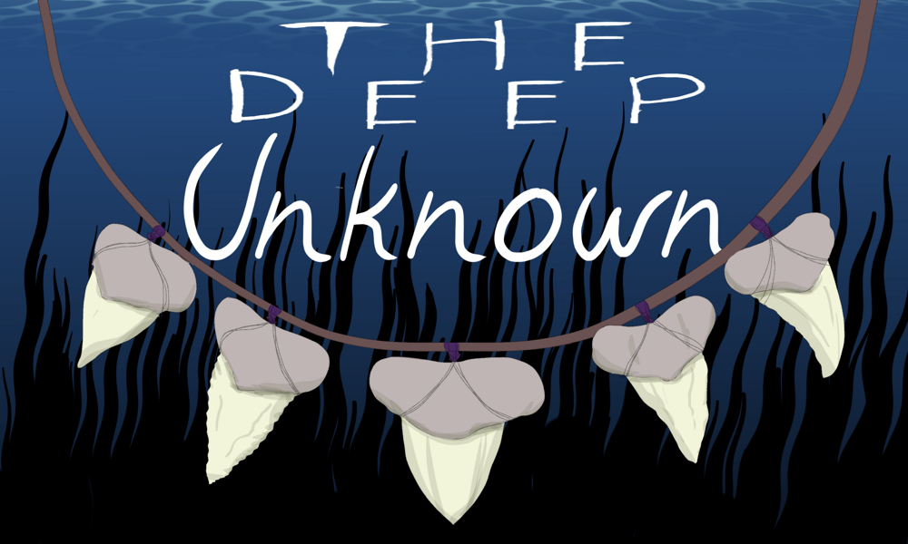 The Deep Unknown -- Demo